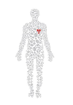 Concepto de cuerpo humano con corazón rojo. Formato vectorial editable. Ilustración de vector