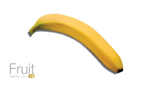 photorealistic: High detailed Banana in scalable vector format  Illustration