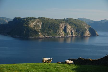 Picturesque coastal landscape in Western Norway photo