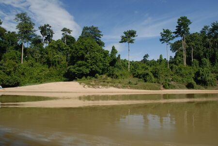 taman: Taman Negara, Malaysia Stock Photo