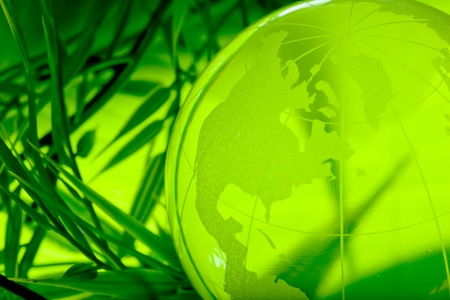 Environment concept, glass globe in the leaf photo