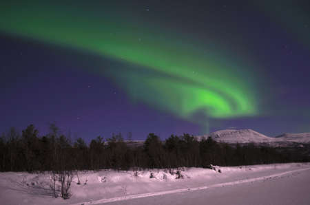 Vivid northern light, aurora borealis in the arctic winter night photo