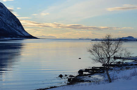 landscape with fjord and serene sky photo