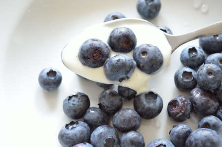 Freshly picked blueberries for dessert on white plate with spoon photo