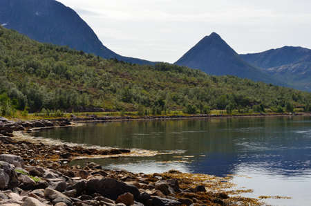sooth: beautiful summer fjord surrounded by majestic mountains