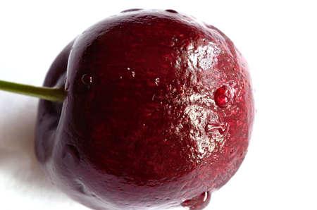 gean: Beautiful vibrant wild cherry macro photo