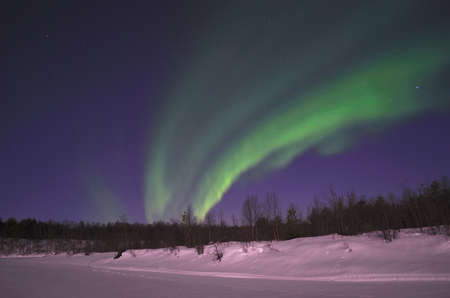 polaris: Fantastic northern light, aurora borealis, in the arctic winter night