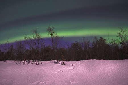 Fantastic northern light, aurora borealis, in the arctic winter night photo