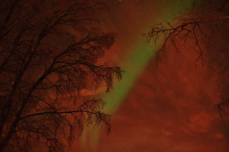 aurora borealis: Beautiful aurora borealis, northern light