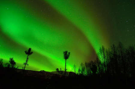 Strong green aurora borealis on the winter night sky in the arctic circle photo