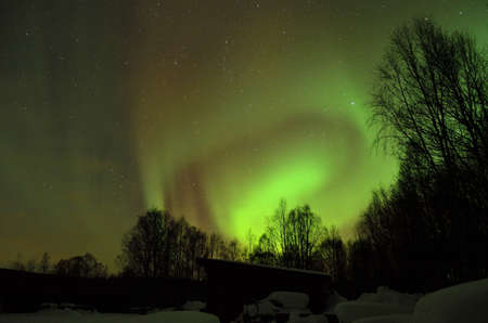 clear and beautiful aurora borealis, northern light on the arctic night sky in winter photo