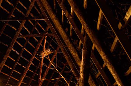 stockfish: beautiful wooden stockfish drying strucutre at night time