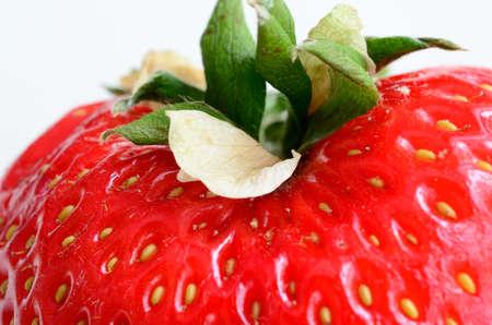 Vibrant and sweet strawberry macro photo photo