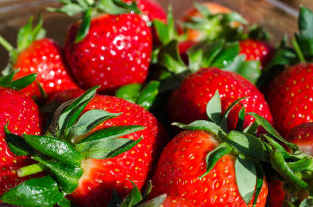 sweet red vibrant strawberries in sunlight in easter macro photo