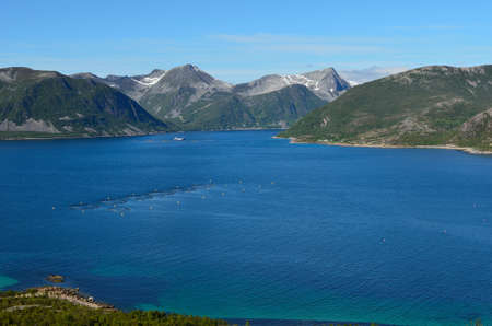 summer landscape with majestic mountanis and deep blue fjords photo