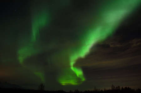 artic circle: solar flare creates strong vibrant aurora borealis on the winter night sky over forest and trees Stock Photo