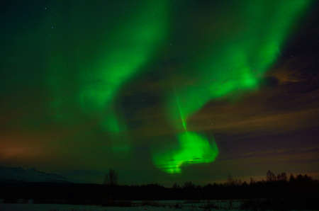 solar flare: solar flare creates strong vibrant aurora borealis on the winter night sky over forest and trees Stock Photo