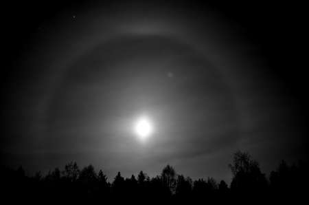 occurrence: beautiful round ring around a full moon behind dark spruce tree forest at night time