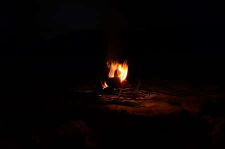 log fire: bruciarsi log betulla fuoco nevoso inverno natura di notte