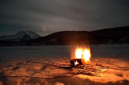 log fire: vibrante caminetto betulla nel paesaggio invernale