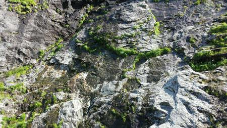 geschniegelt: Wet glatt und moosbewachsenen Steilk�ste im Sommer Sunlight Lizenzfreie Bilder