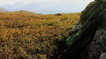 net: Grouse hunting on autumn mountain with sunshine backpack shotgun and grouse resting on boulder