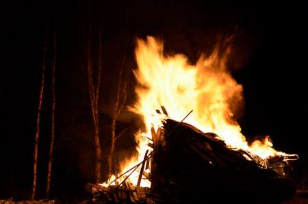 resplandor: fogata masiva en el bosque de la noche árbol de abedul de invierno