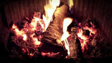 fireplace: Hot burning birch tree log in fireplace Stock Photo