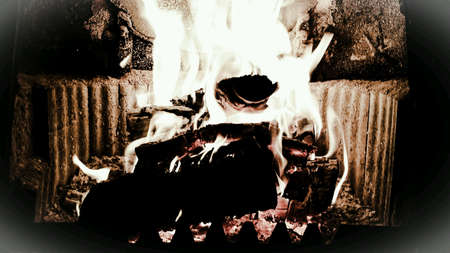 vibrance: Hot burning birch wood logs in fireplace on cold winter day