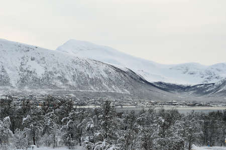 mainland: snowy forest and tromsdalen mainland