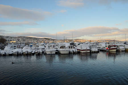 webfoot: alot of ducks swimming amongst snow covered boats in marina