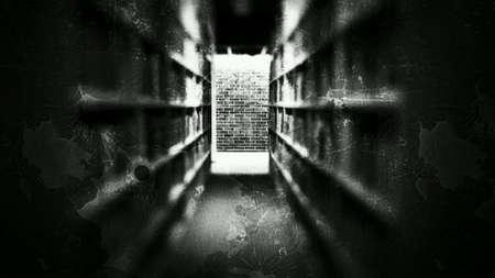 dark: Erie book shelf hallway with cinderblock wall at the end