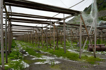 stockfish: empty wooden stockfish structure with small salt piles on the green ground