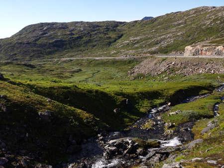 lush: lush green summer mountain