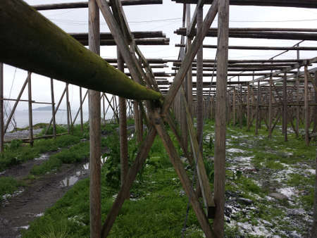 stockfish: massive empty stockfish structure with salt piles on the ground Stock Photo