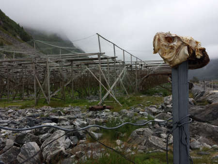 metal pole: fish head on metal pole in front of stockfish structure