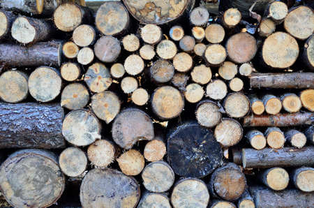 stacked: beautiful stacked firewood background