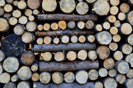 firewood background: beautiful stacked firewood background