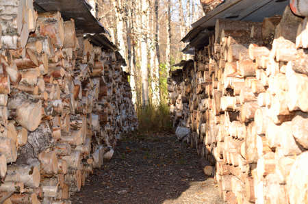 beautiful stacked firewood background