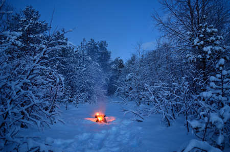 hot warming campfire in snowy winter forest Stock Photo