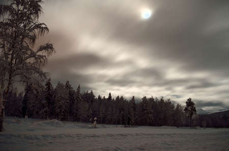 winter field: full moon over snowy winter field and forest Stock Photo