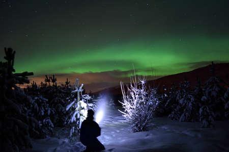 person pointing flashlight beam towards aurora borealis on winter night sky in spruce tree field 免版税图像