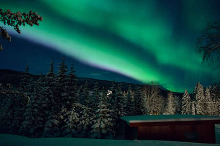 nightshot: colorful aurora borealis over mountain, forest and garage