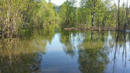 black: Flooded river in forest and submerged dirt road, annual flood Stock Photo