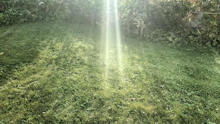 Bright sun beams on green summer lawn as an opening in the rain clouds appears