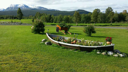 Beautiful old boat flower bed in summer sunshine on green pasture