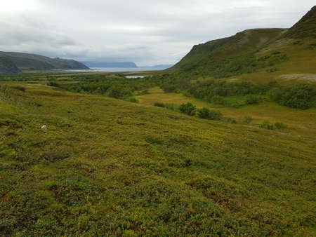 lush green valley with sea in the end