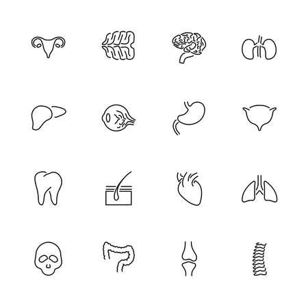 Human Organs, Transplantation outline icons set - Black symbol on white background. Human Organs Simple Illustration Symbol - lined simplicity Sign. Flat Vector thin line Icon - editable stroke
