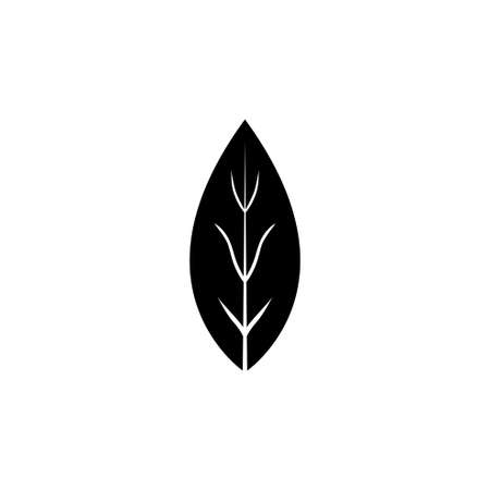 Aromatic Bay Laurel Leaf, Aroma Spice. Flat Vector Icon illustration. Simple black symbol on white background. Aromatic Bay Laurel Leaf, Aroma Spice sign design template for web and mobile UI element Çizim