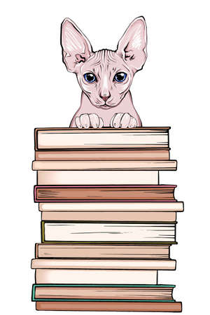 portrait of pet with books for education. animal portrait holds books with its paws. color portrait with books for school and university. vector portrait of a student cat with books.